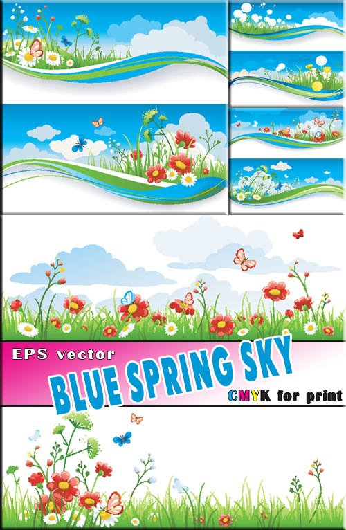 Яркие красоты полевых цветов (растр и вектор)GT_1111%
