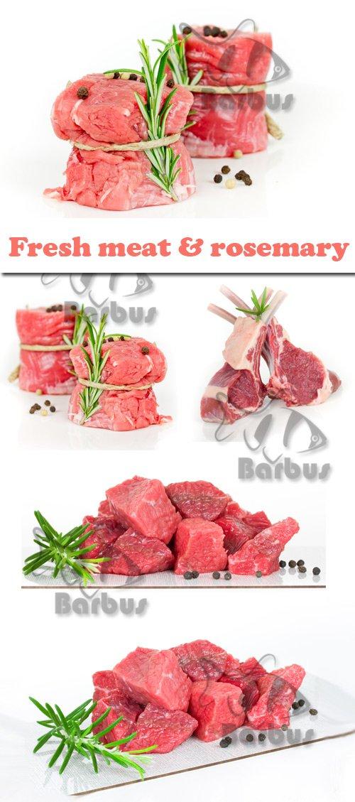 Fresh meat and rosemary / Свежее мясо и розмарин  - Photo stock