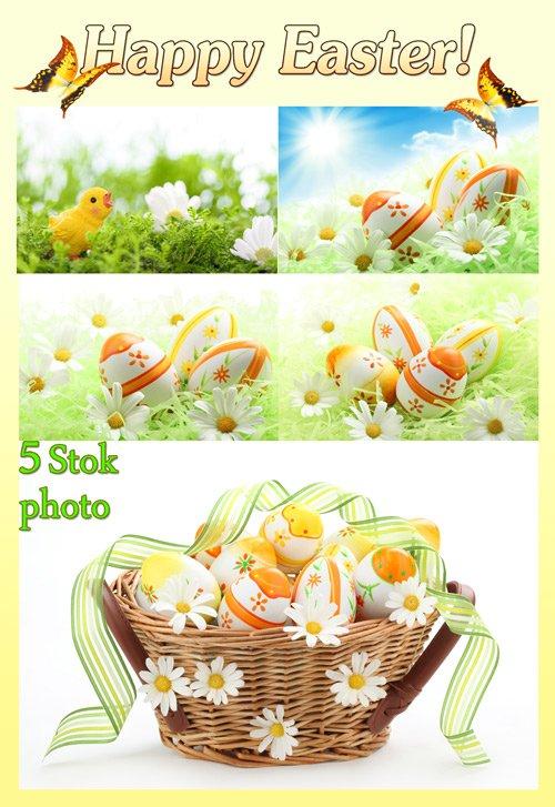 Пасха, корзина с пасхальными яйцами и лентой, ромашки - Сток фото