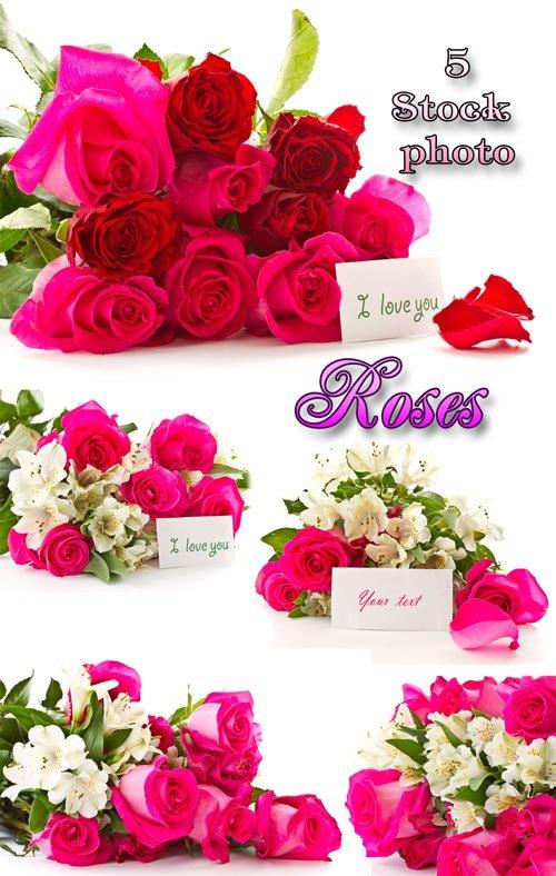 Розы, букеты роз с открытками для текста - растровый клипарт