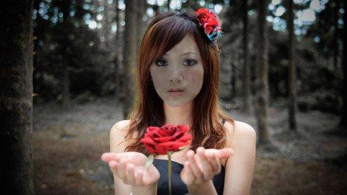 PSD шаблон - С чудесной розой