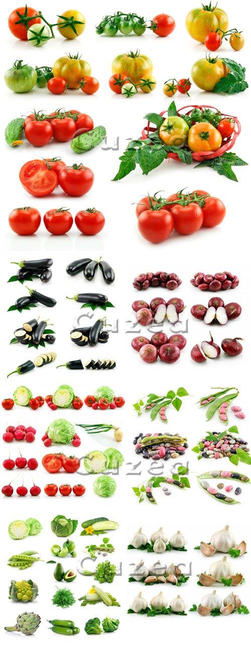 Овощи на белом фоне/ Vegetables on white background - stock photo