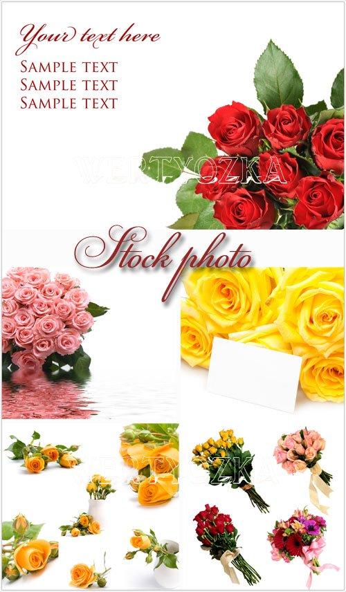 Цветы, прекрасные розы - растровый клипарт / Flowers, bouquets, roses