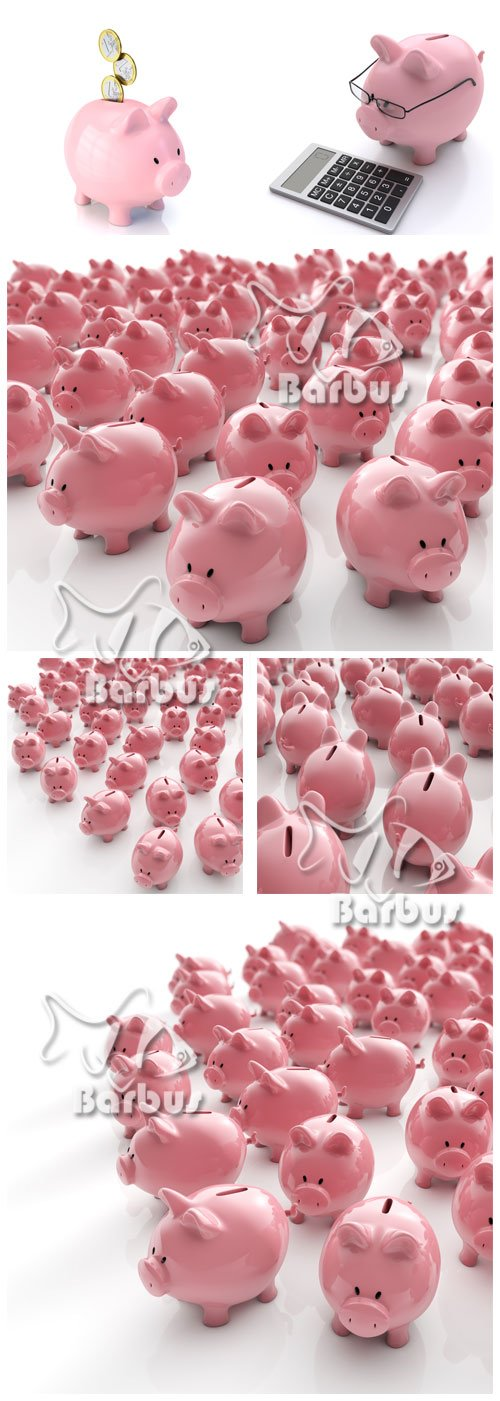 Pigs of a moneybox / Армия свинок копилок