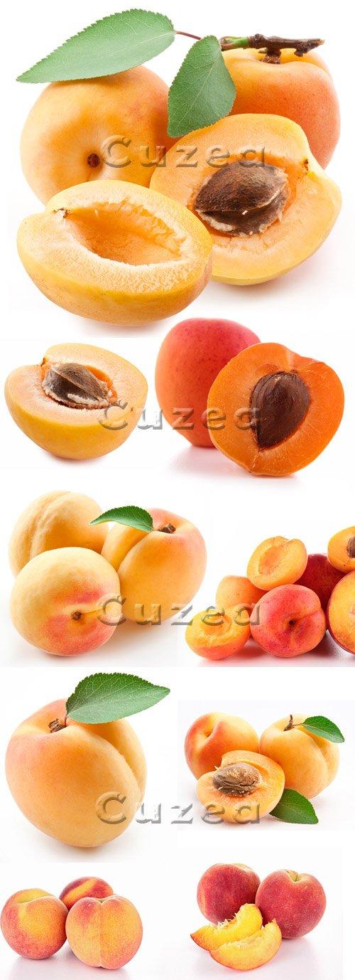 Абрикосы на белом фоне / Apricots on white background - stock photo