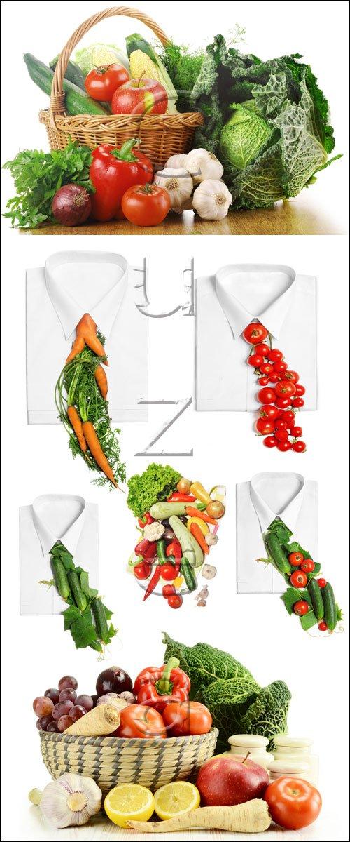 Овощи на белом фоне, 4 / Vegatables on white - stock photo