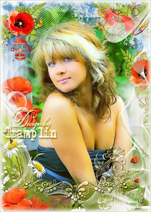 Рамка с цветами - Ромашки, маки на лугу цветут и пахнут