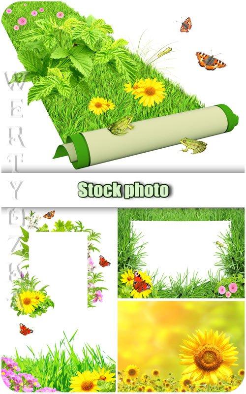 Цветы, зеленая трава и бабочки / Flowers, green grass and butterflies - Raster clipart