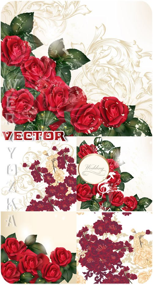 Свадебные фоны с розами и золотыми узорами / Wedding backgrounds with roses and golden ornaments - vector