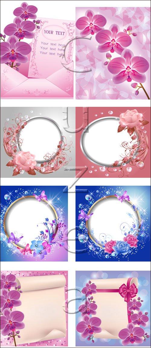 Векторные рамки, свиток и цветы / Vector flower, scroll and frame