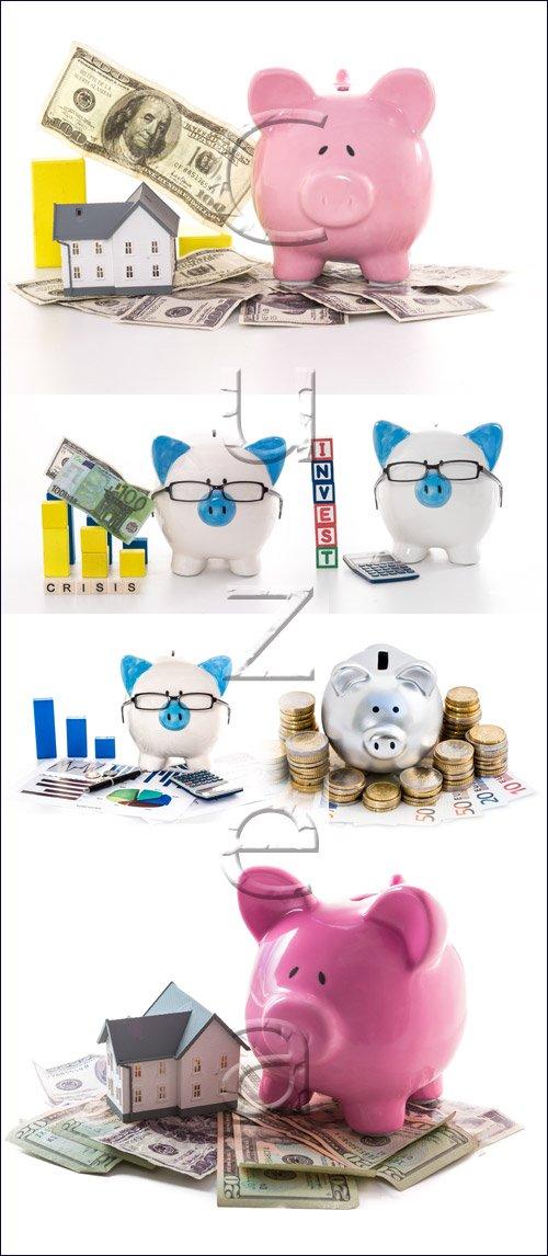 Свинья-копилка и деньги / Money pig - stock photo