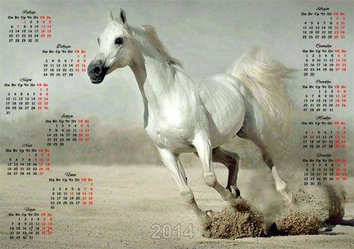 Красивый календарь - Снежнобелая лошадь