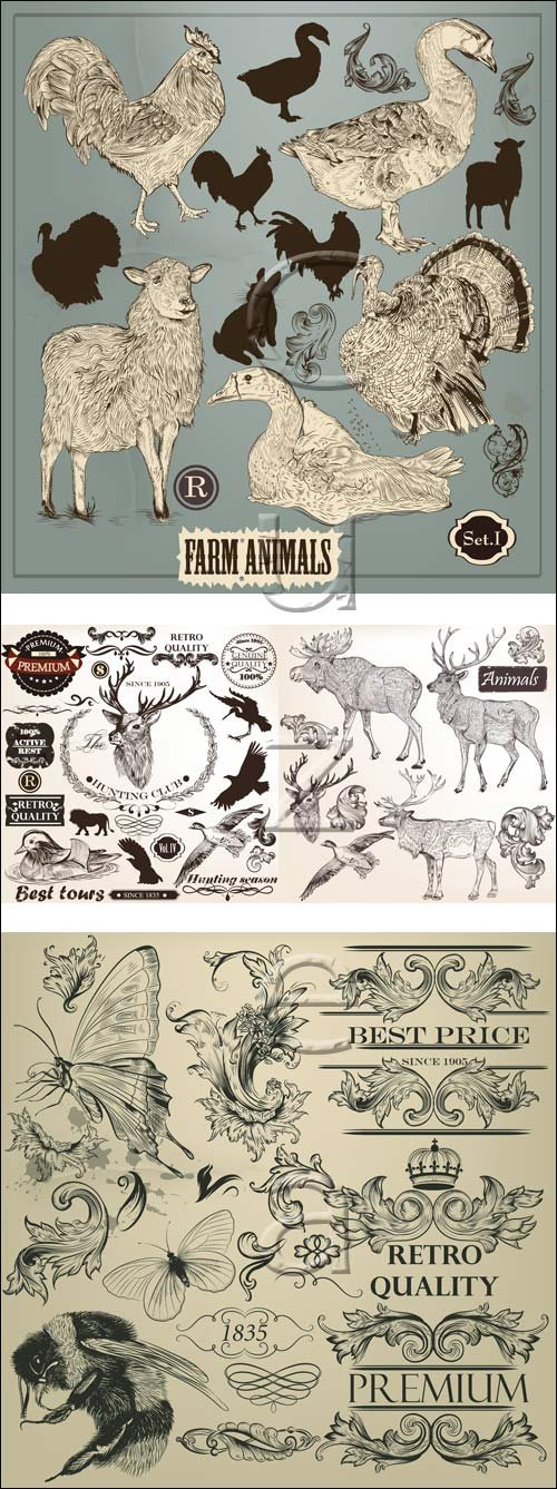 Domestic and wild animals in vector set, 3