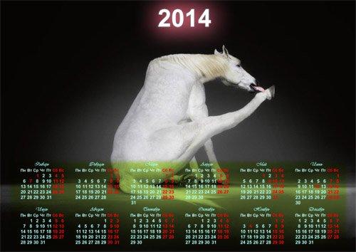 Календарь на 2014 год - Прикольная белая лошадка