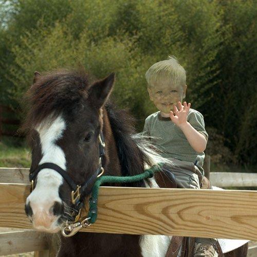 Шаблон для фотошопа - Мальчик сидит на пони