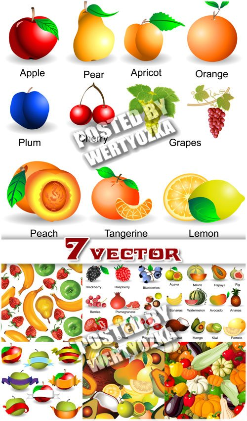 Фрукты и овощи, фоны / Fruits and vegetables backgrounds - stock vector