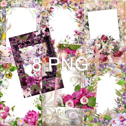 Рамки для фотошопа – В окружении цветов