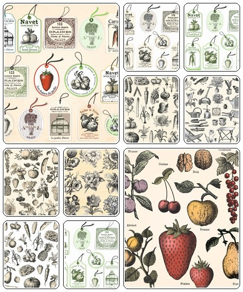 Fruit and vegetables in vintage style - vector stock