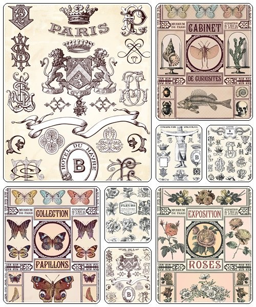 Vintage elements, 57 - vector stock
