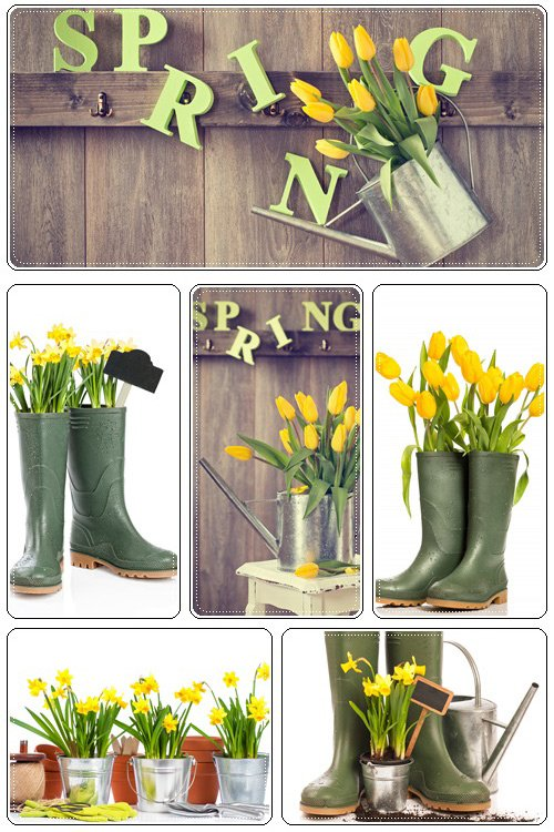 Spring wood decoration - Stock Photo