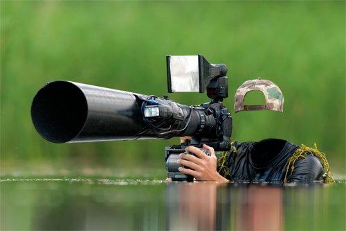 Шаблон psd - Профессиональный фотограф