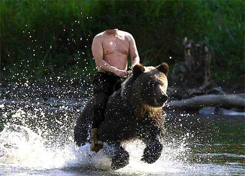 Шаблон psd - Поездка на медведе