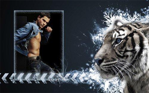 Рамка для фотошоп - Красивый тигр