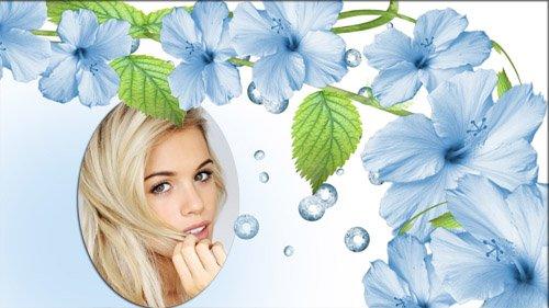 Фоторамка psd - Нежные цветы