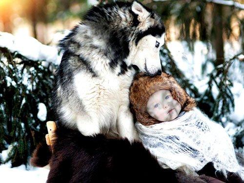 Шаблон для фото - Малыш с красивой хаской