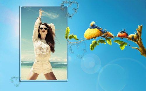 Рамка для фотографии - Смешные птицы на ветке