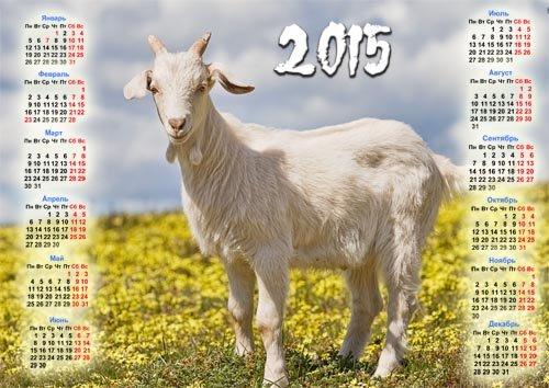 Календарь на 2015 год - Коза на поле