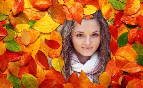 Рамка psd - Яркие осенние листья