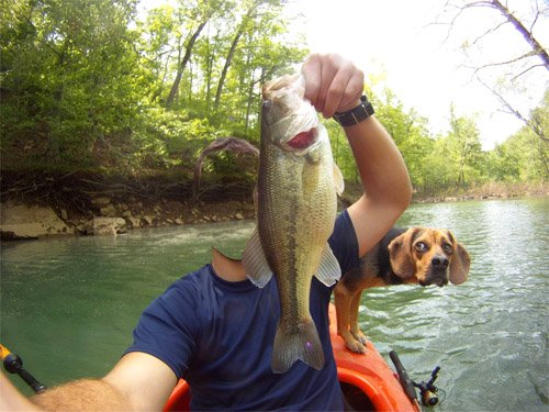 Шаблон psd - На рыбалке в лодке с собакой