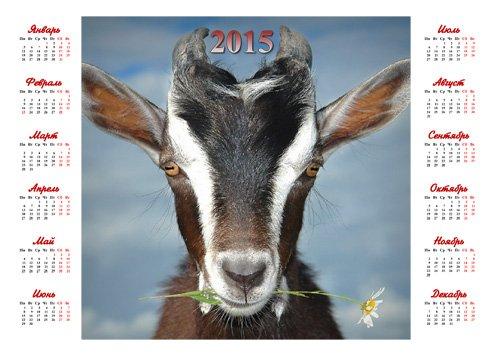 Красивый календарь - Символ года с ромашкой