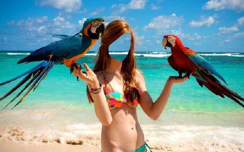 Шаблон для девушек - На пляже с 2-мя классными попугаями