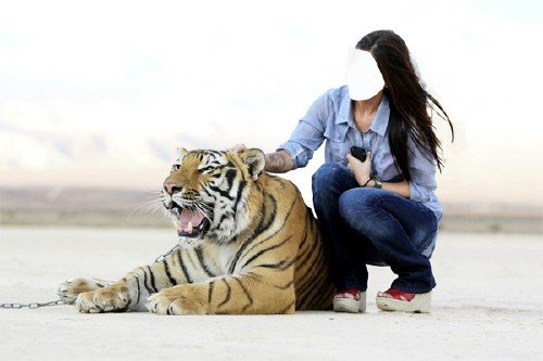 Шаблон psd - Вместе с красивым тигром