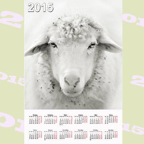 Календарь - Белая овца