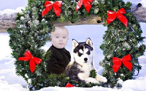 Шаблон psd - Ребенок и щенок хаски под рождественским венком