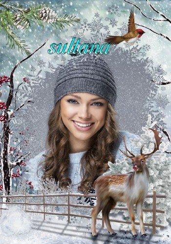 Зимняя рамка для фотошопа - Бродит по лесу олень