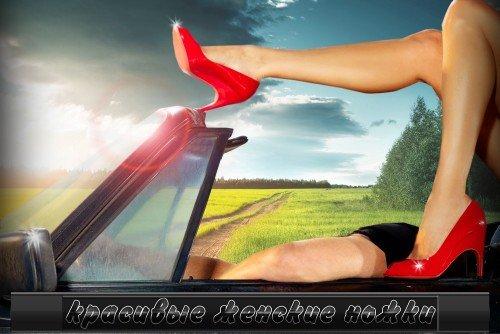 Прикольный фотошаблон для фотомонтажа - Красивые женские ножки