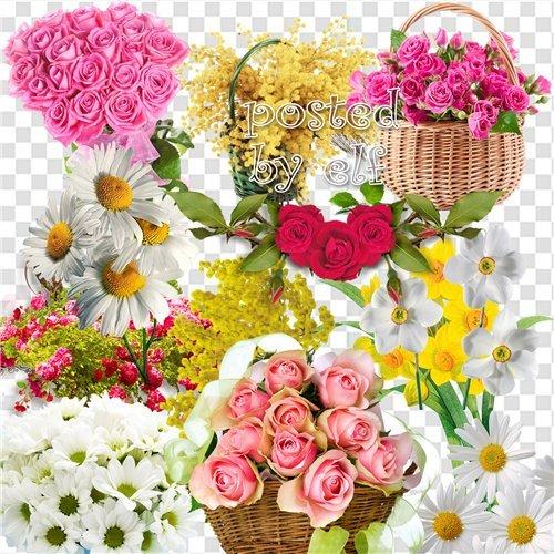 Весеннее настроение - цветочный клипарт в PNG