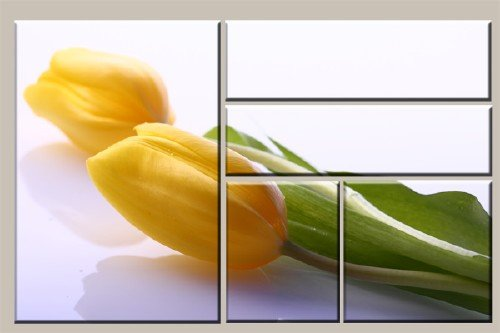 Модульная картина из пяти частей - Тюльпан