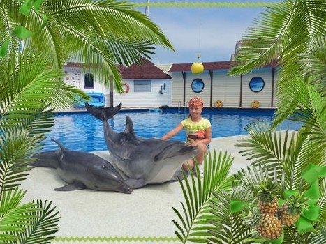 Рамочка для летнего фото с пальмами и ананасами