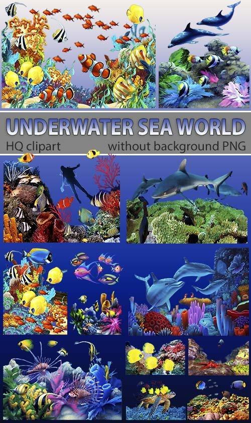 Красивый подводный мир - водолазы и коралы (для дизайна)