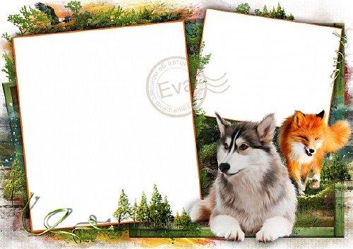 Рамочка для фотографий - В диком лесу