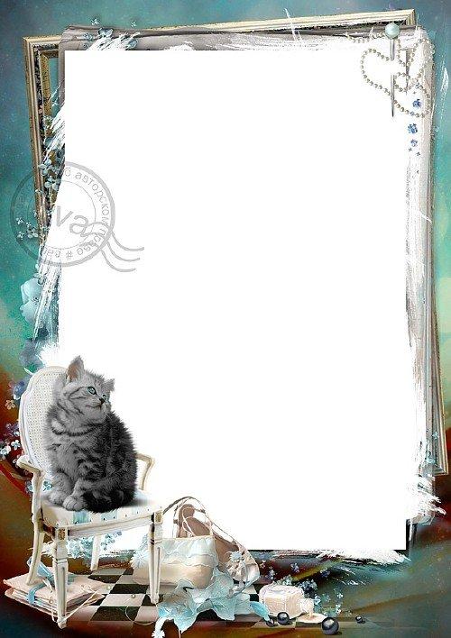 Рамка для фотошоп - Голубоглазый котенок